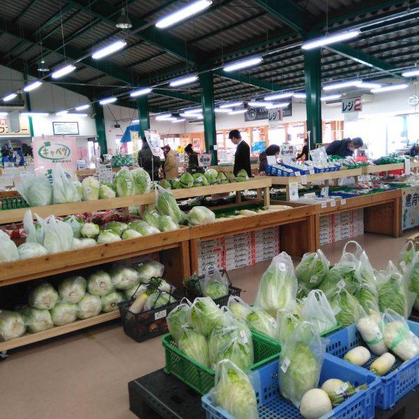 新鮮野菜くだものの宝庫!安心・安全な食材を扱うJA農産物直売所「ここら」をご紹介! 季節のおいしさを楽しめるベストスポット!の画像